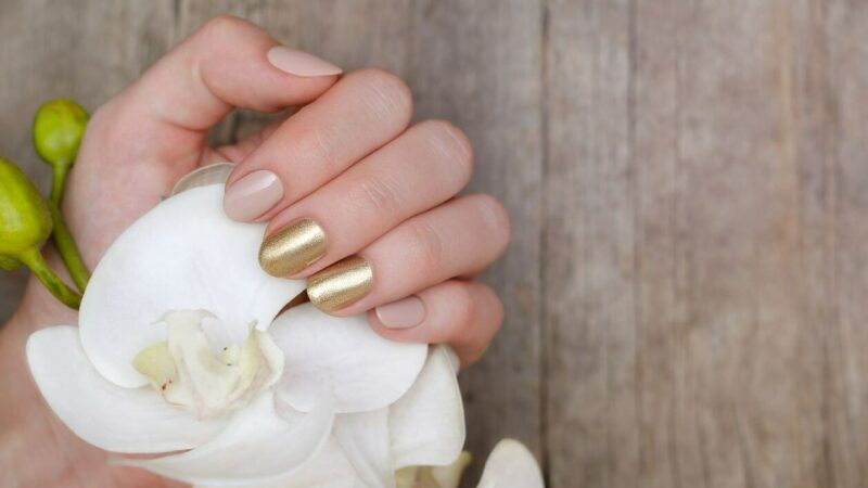 Warum Du Pale Nails unbedingt tragen solltest!