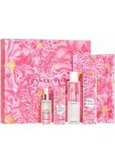 John Derian x Chantecaille Rose de Mai Harvest Set