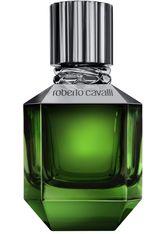 ROBERTO CAVALLI - Roberto Cavalli Paradise Found for Men 50 ml Eau de Toilette (EdT) 50.0 ml - PARFUM