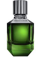 ROBERTO CAVALLI - Roberto Cavalli Paradise Found for Men 75 ml Eau de Toilette (EdT) 75.0 ml - PARFUM