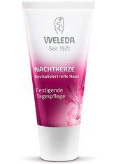 WELEDA - Weleda Nachtkerze Tagespflege -  30 ml - TAGESPFLEGE