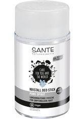 Sante Produkte Pure Spirit - Kristall Deo Stick 100g Deodorant Stift 300.0 g