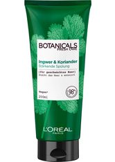 L'ORÉAL PARIS - L'Oréal Paris Botanicals Fresh Care Ingwer & Koriander Conditioner  200 ml - CONDITIONER & KUR