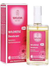WELEDA - Weleda Women's Wild Rose Deodorant 100 ml - DEODORANTS