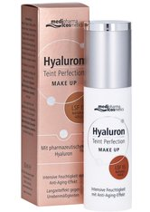 DR. THEISS NATURWAREN - HYALURON TEINT Perfection Make-up natural gold 30 ml - FOUNDATION