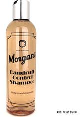 Morgan's Dandruff Control Shampoo 5000 ml