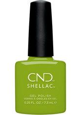 CND Shellac Autumn Addict Crisp Green 7,3 ml