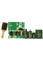 Aktion - Paul Mitchell Tea Tree Essentials-Kit Haarpflegeset
