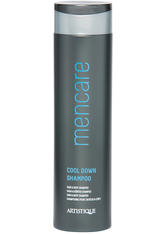 ARTISTIQUE - Artistique Youcare Men Cool Down Shampoo 250 ml - SHAMPOO & CONDITIONER