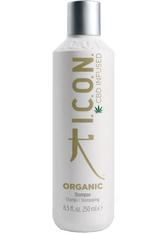 ICON Produkte Shampoo Haarshampoo 250.0 ml