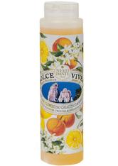 Nesti Dante Firenze Pflege Dolce Vivere Capri Shower Gel 300 ml