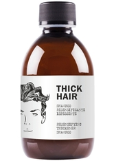 DEAR BEARD - Dear Beard Thick Hair Shampoo 250 ml - BARTPFLEGE