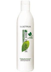 BIOLAGE - Biolage Scalpthérapie Cooling Mint Shampoo - SHAMPOO