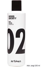 Artego Good Society Rich Color 02 Shampoo 1000 ml