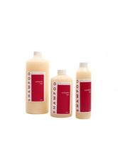 L'IMAGE - L'IMAGE Spezial Shampoo für Trainingsköpfe - SHAMPOO