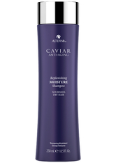 Alterna Caviar Kollektion Moisture Replenishing Moisture Shampoo 250 ml