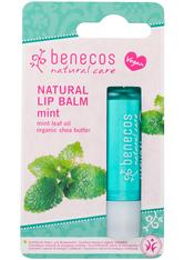 benecos Lippen Lip Balm - Mint 4.8g Lippenbalm 4.8 g