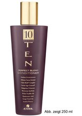 Alterna Ten Kollektion Ten Perfect Blend Conditioner 920 ml