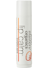JOHN MASTERS ORGANICS - john masters organics Skincare Lip Calm  Pumpkin Spice 4 g - LIPPENBALSAM