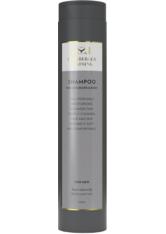 Lernberger & Stafsing For Men Shampoo for Hair, Beard & Body 250 ml