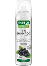 Rausch Produkte RAUSCH Dry Shampoo fresh Dosierspray Trockenshampoo 150.0 ml