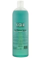 Oggi Curl Return Spray
