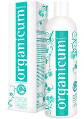 ORGANICUM - organicum Shampoo für trockenes, schuppiges Haar 350 ml - SHAMPOO