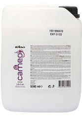LOVE FOR HAIR Professional Cameo Color Creme Oxyd 1,9 % 6 vol. 5000 ml