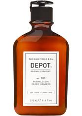 DEPOT 101 Normalizing Daily Shampoo 250 ml