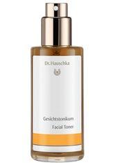 DR. HAUSCHKA - Dr. Hauschka Gesichtstonikum - GESICHTSWASSER & GESICHTSSPRAY