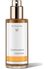 DR.HAUSCHKA - Dr. Hauschka Reinigung 100 ml Gesichtswasser 100.0 ml - GESICHTSWASSER & GESICHTSSPRAY