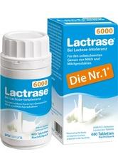 NATURA - Lactrase 6000 Fcc Tabletten Klickspender Nachfüllpack - ABNEHMEN