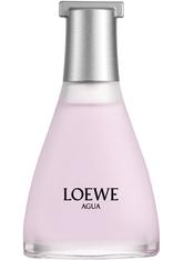 LOEWE - Loewe Madrid 1846 Agua de Loewe Ella Eau de Toilette Nat. Spray 50 ml - PARFUM