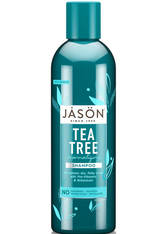 JASON - JASON NormalisiertesTea Tree Treatment Shampoo (517ml) - SHAMPOO