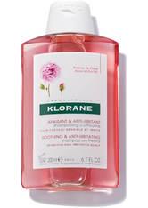 KLORANE - KLORANE Soothing & Anti-Irritating Shampoo with Peony 200ml - SHAMPOO