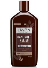 JASON SchuppenRelief Treatment Shampoo (355ml)