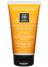 APIVITA Holistic Hair Care Nourish & Repair Conditioner for Dry-Damaged Hair - Olive & Honey 150ml