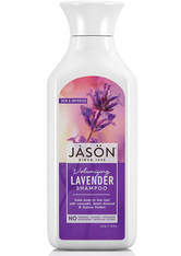 JASON - JASON Natural Lavendel Shampoo 473ml - SHAMPOO