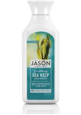JASON - JASON Smoothing SeetangShampoo (473ml) - SHAMPOO