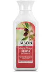 JASON - JASON Natural Jojoba Shampoo (473ml) - SHAMPOO