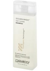 GIOVANNI - Giovanni Golden Wheat Shampoo 250 ml - SHAMPOO