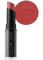 BH COSMETICS - BH Cosmetics Color Lock Langanhaltend matt Lippenstift: Devotion - LIPPENSTIFT