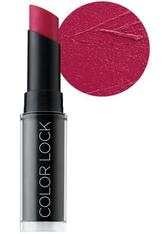 BH COSMETICS - BH Cosmetics Color Lock Langanhaltend matt Lippenstift: Dark Rose - LIPPENSTIFT