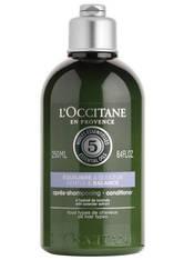 L'OCCITANE - L´OCCITANE Balance Haarspülung 250 ml - CONDITIONER & KUR