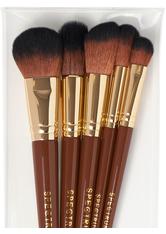 Pantherine 5 Piece Face Brush Set