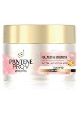 PANTENE PRO-V Fullness & Strenhgt Biotin + Rosewasser Haarmaske 160 ml