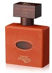 DAVID JOURQUIN - David Jourquin Cuir Mandarine Vendôme Collection Eau de Parfum 100 ml - PARFUM