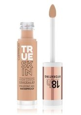 Catrice True Skin High Cover Concealer 4.5 ml Warm Toffee