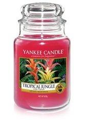 Yankee Candle Housewarmer Tropical Jungle Duftkerze 0,623 kg