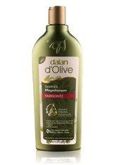 DALAN D'OLIVE - Dalan d'Olive Farbschutz Haarshampoo  400 ml - SHAMPOO